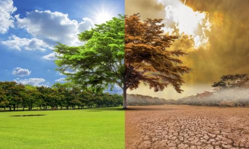 Изменения климата оказались причиной войн и конфликтов